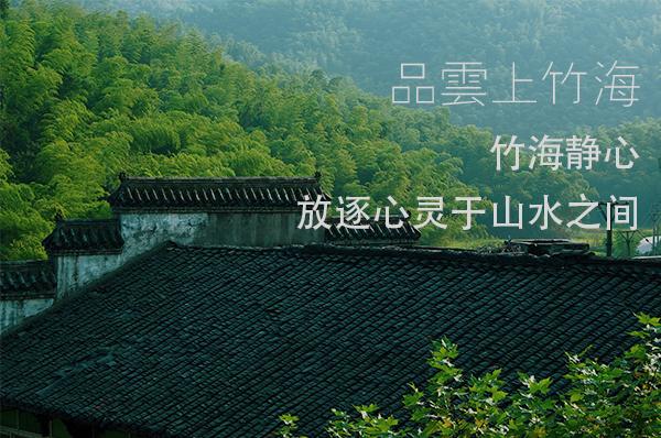 竹海静心丨放逐心灵于山水之间,竹海吸氧徒步