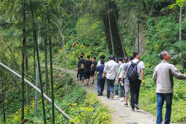 杨树林环线四级步道